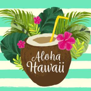 Accessoires Hawaïen
