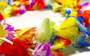 collier a fleur hawai